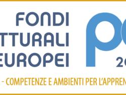Loghi PON 2014 2020 fse fesr corto